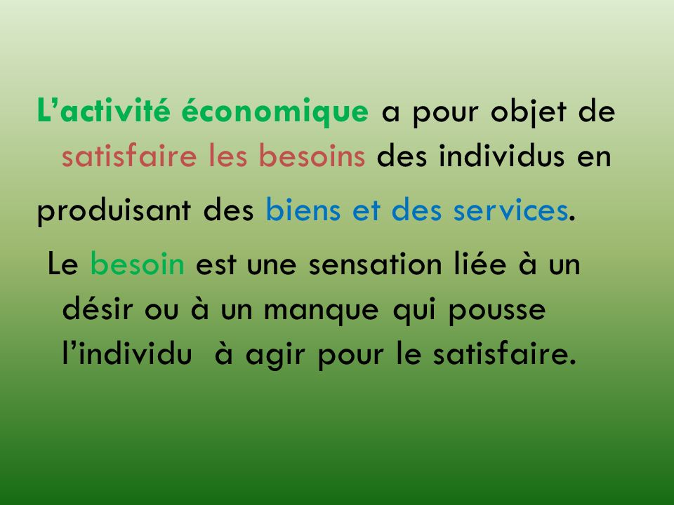 L'activité économique a pour objet de satisfaire les besoins des individus en produisant des biens et des services.