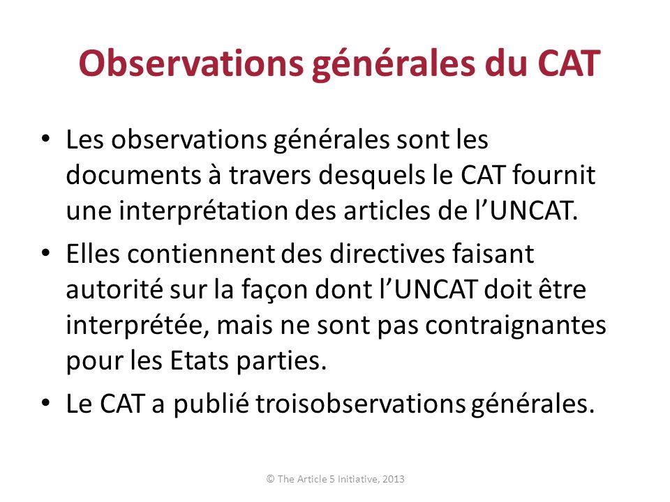 Observations générales du CAT
