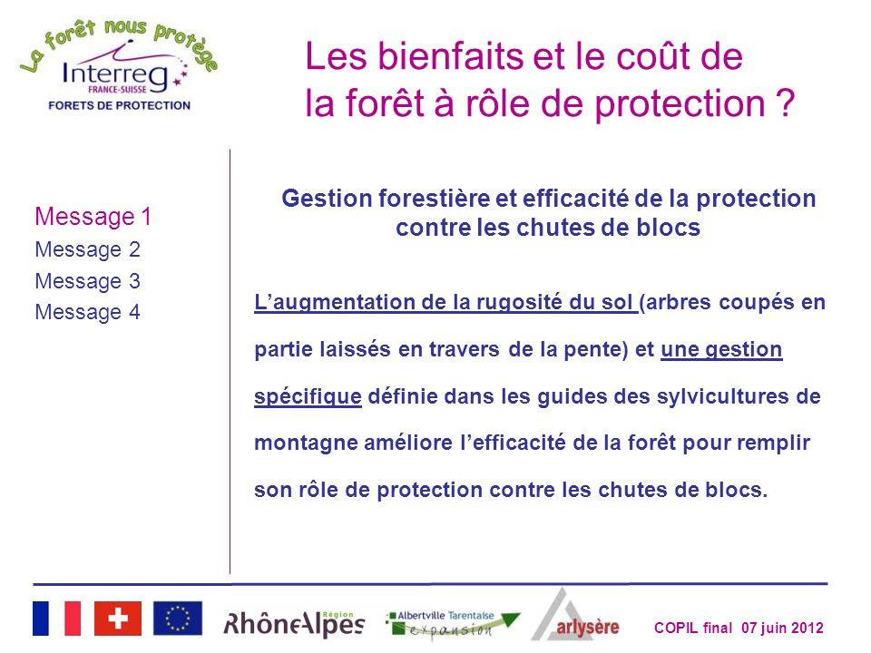 Les bienfaits et le coût de la forêt à rôle de protection