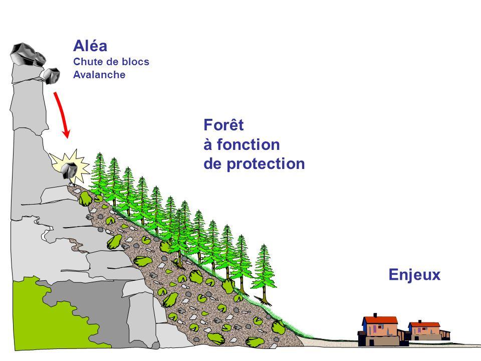 Aléa Chute de blocs Avalanche Forêt à fonction de protection Enjeux