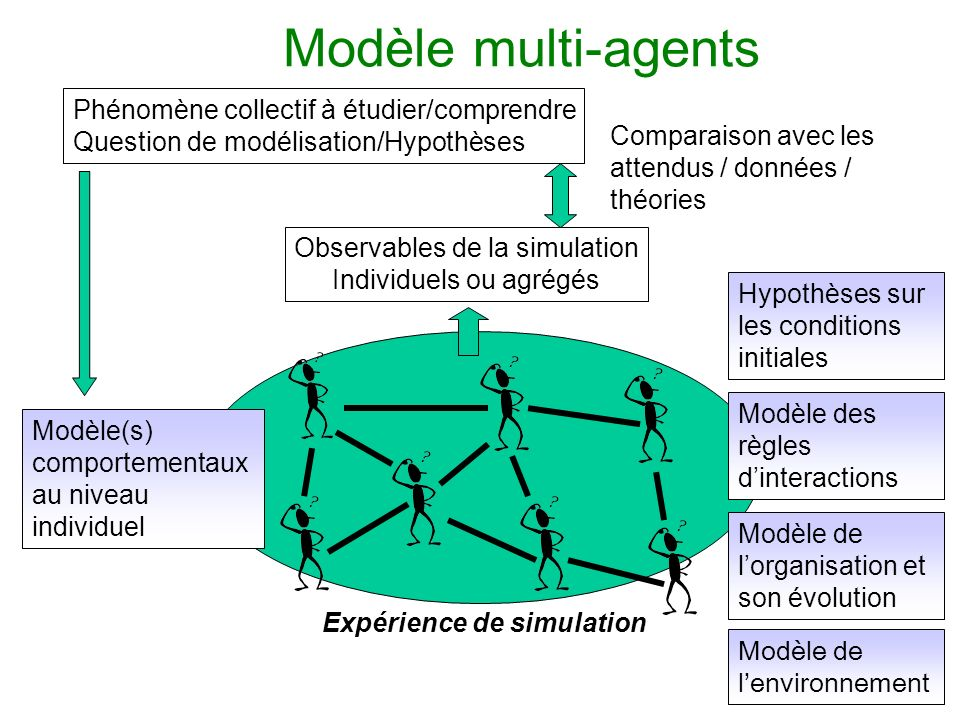 Modèle multi-agents Phénomène collectif à étudier/comprendre