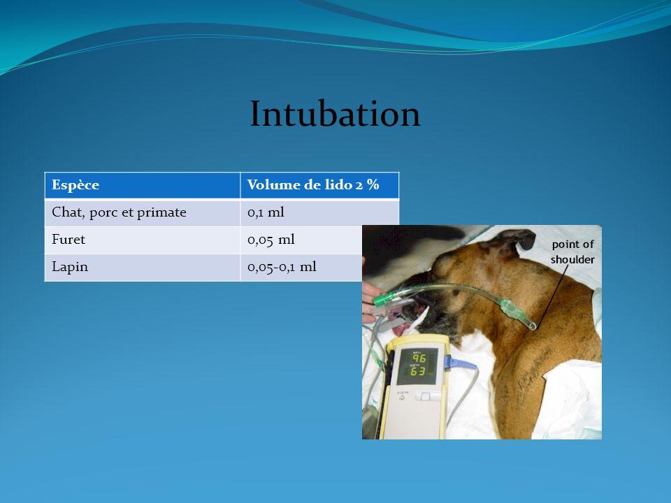 Intubation Espèce Volume de lido 2 % Chat, porc et primate 0,1 ml