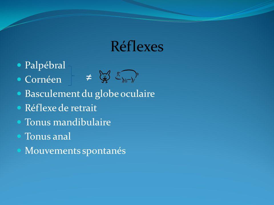 Réflexes ≠ Palpébral Cornéen Basculement du globe oculaire