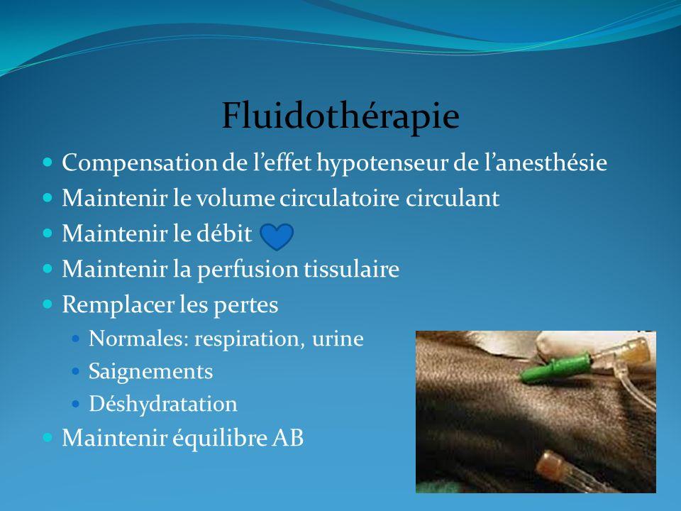 Fluidothérapie Compensation de l'effet hypotenseur de l'anesthésie