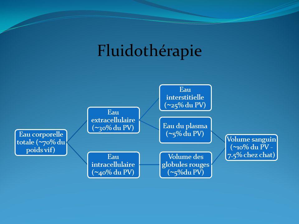 Fluidothérapie Eau corporelle totale (~70% du poids vif)