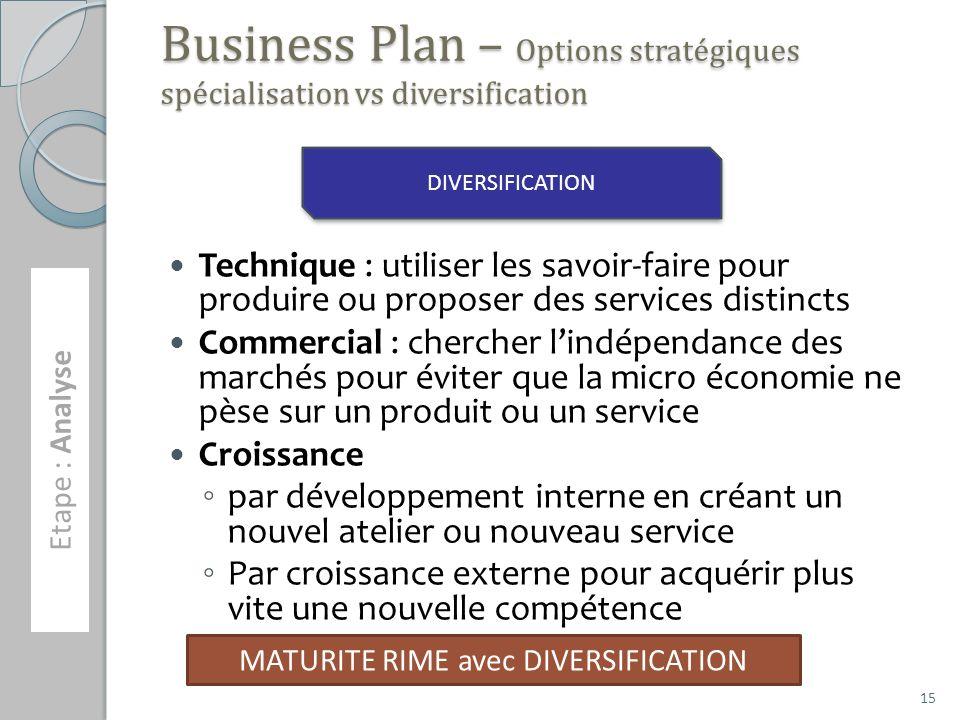 Business Plan – Options stratégiques spécialisation vs diversification