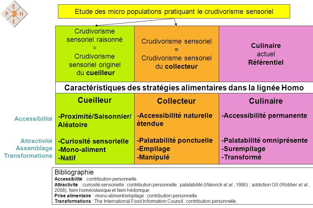 Caractéristiques des stratégies alimentaires dans la lignée Homo