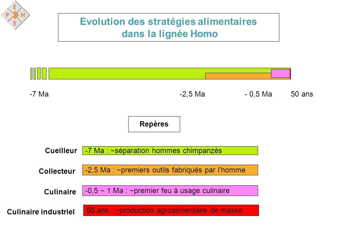 Evolution des stratégies alimentaires