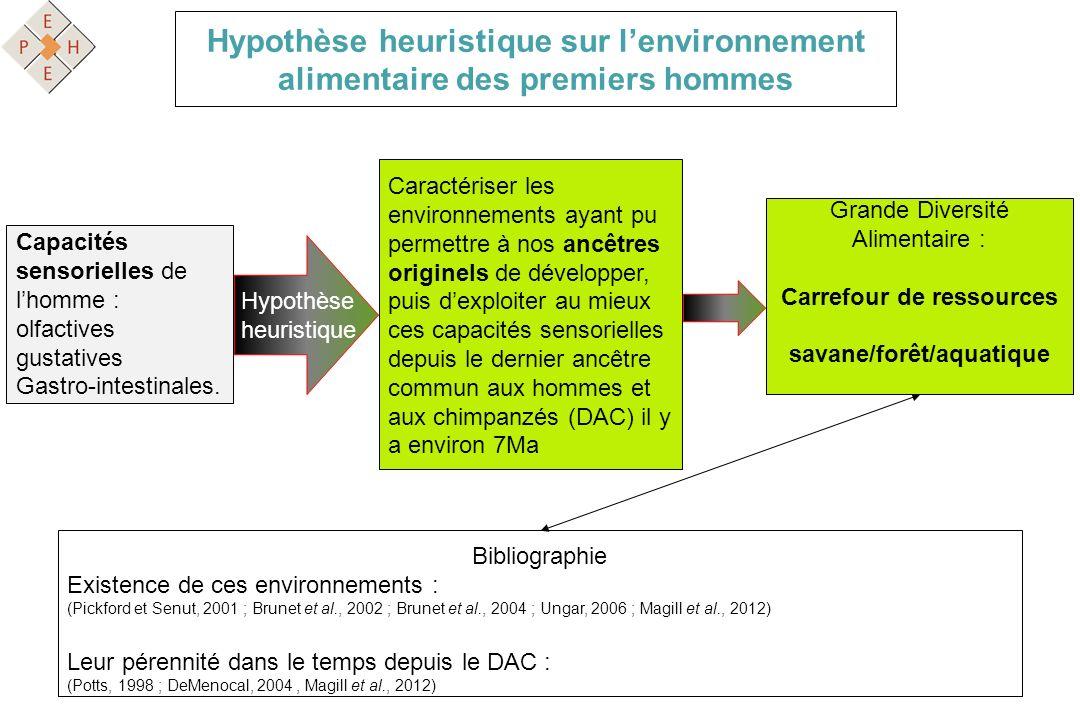 Carrefour de ressources savane/forêt/aquatique