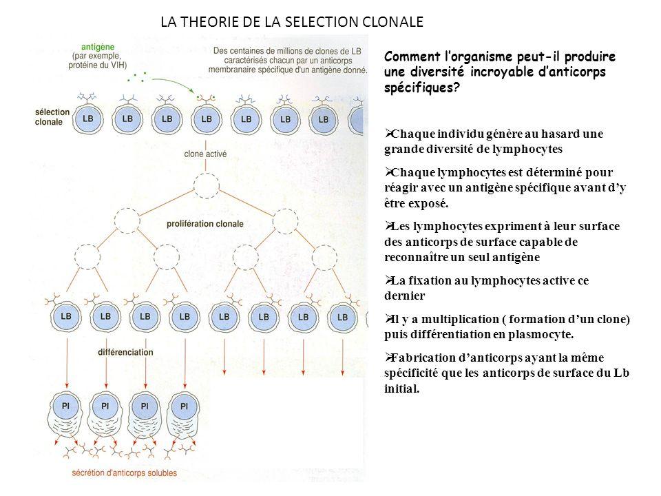 LA THEORIE DE LA SELECTION CLONALE