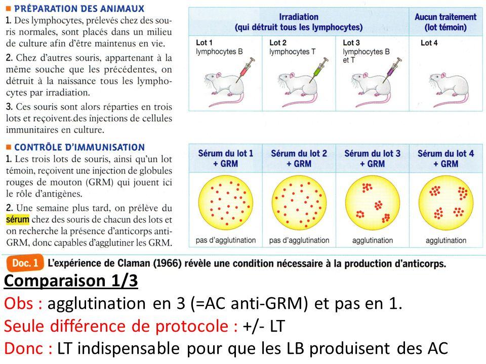 Comparaison 1/3 Obs : agglutination en 3 (=AC anti-GRM) et pas en 1. Seule différence de protocole : +/- LT.
