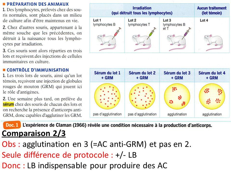 Comparaison 2/3 Obs : agglutination en 3 (=AC anti-GRM) et pas en 2. Seule différence de protocole : +/- LB.