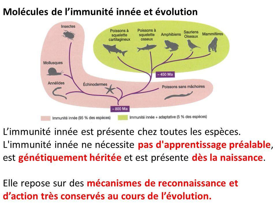 Molécules de l'immunité innée et évolution