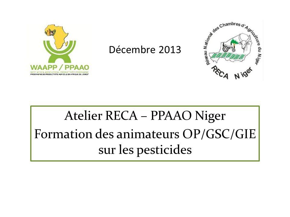 Atelier RECA – PPAAO Niger