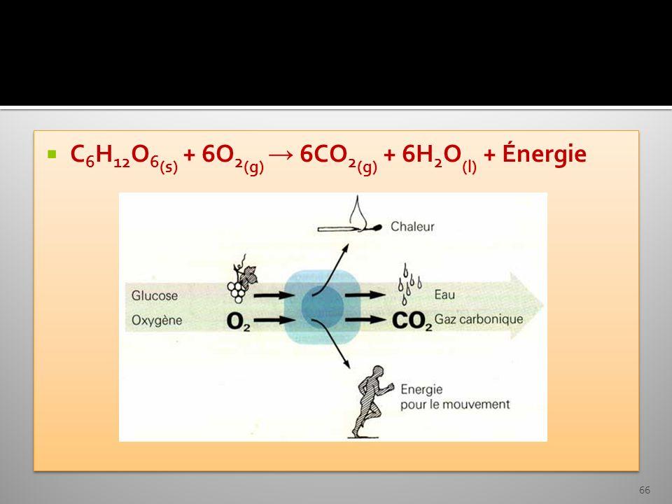 C6H12O6(s) + 6O2(g) → 6CO2(g) + 6H2O(l) + Énergie