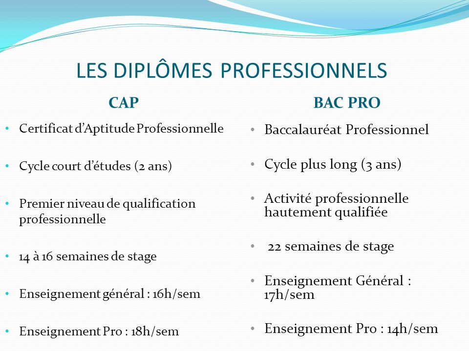 LES DIPLÔMES PROFESSIONNELS