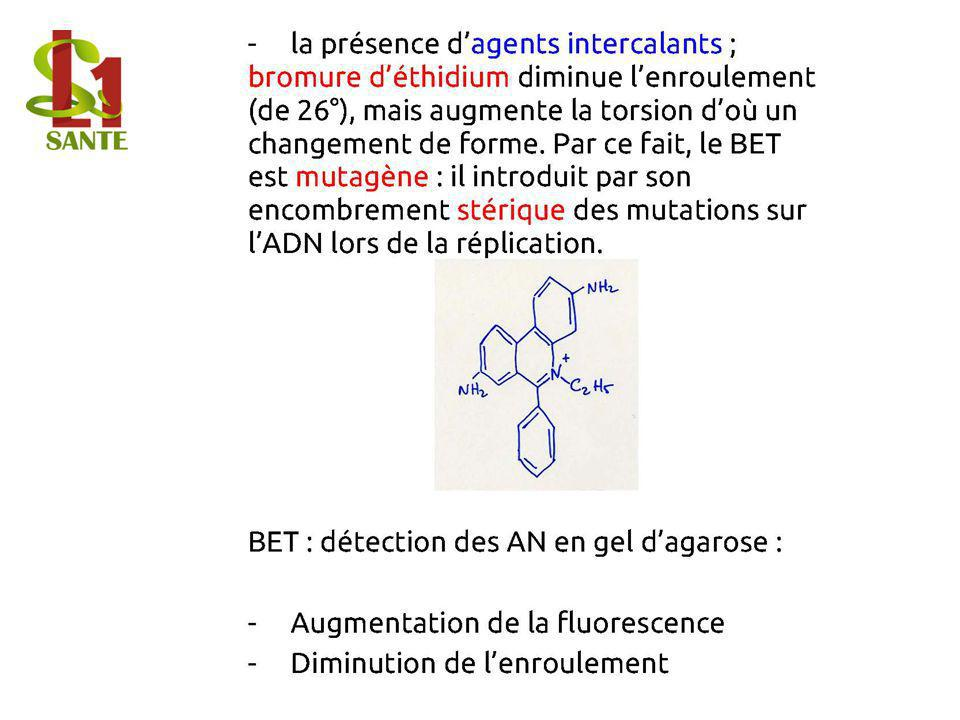12. Agents intercalants
