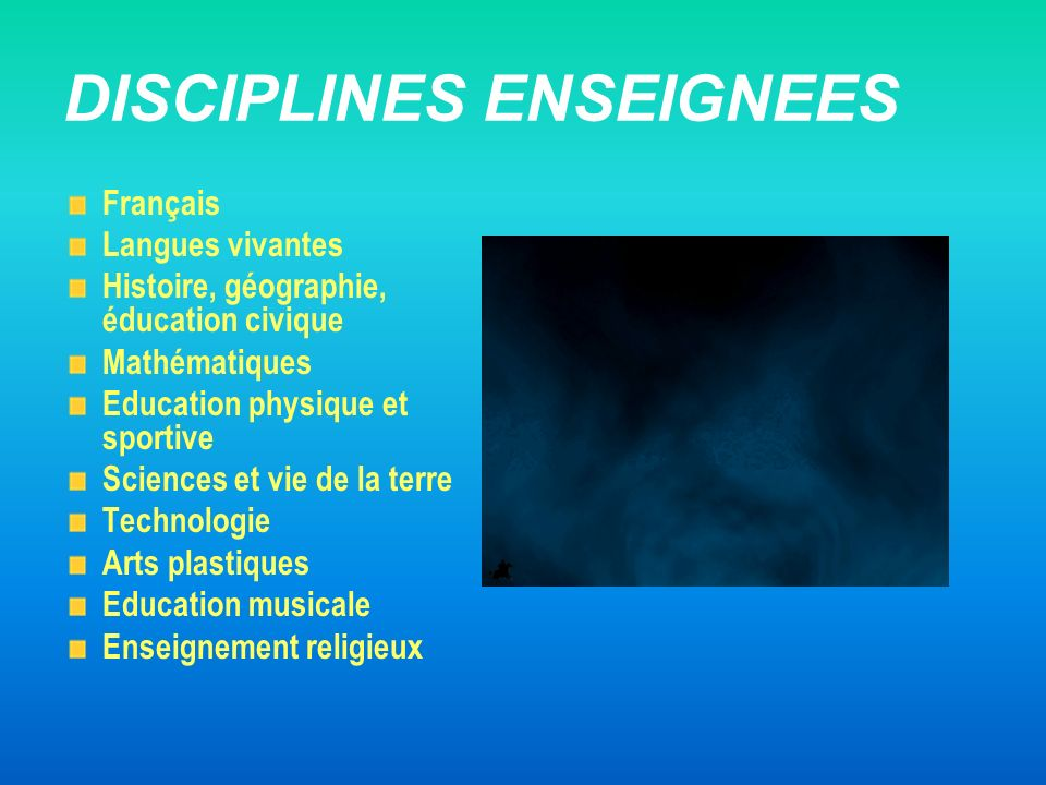 DISCIPLINES ENSEIGNEES