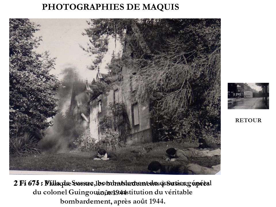 PHOTOGRAPHIES DE MAQUIS