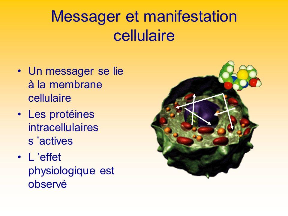 Messager et manifestation cellulaire