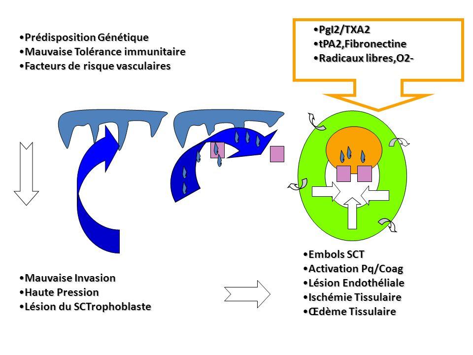 PgI2/TXA2 tPA2,Fibronectine. Radicaux libres,O2- Prédisposition Génétique. Mauvaise Tolérance immunitaire.
