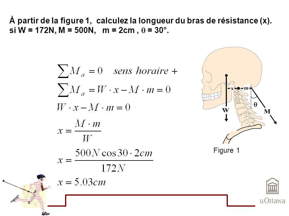 À partir de la figure 1, calculez la longueur du bras de résistance (x). si W = 172N, M = 500N, m = 2cm ,  = 30°.