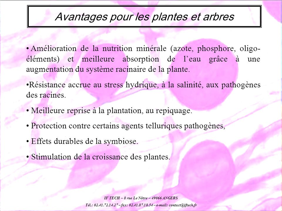 Avantages pour les plantes et arbres