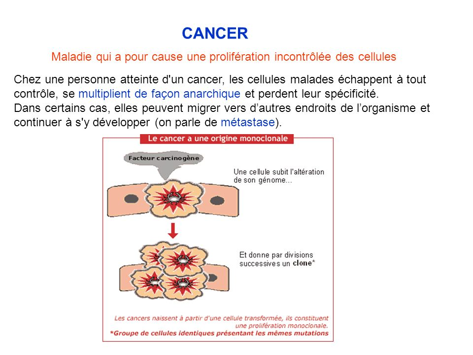 CANCER Maladie qui a pour cause une prolifération incontrôlée des cellules.