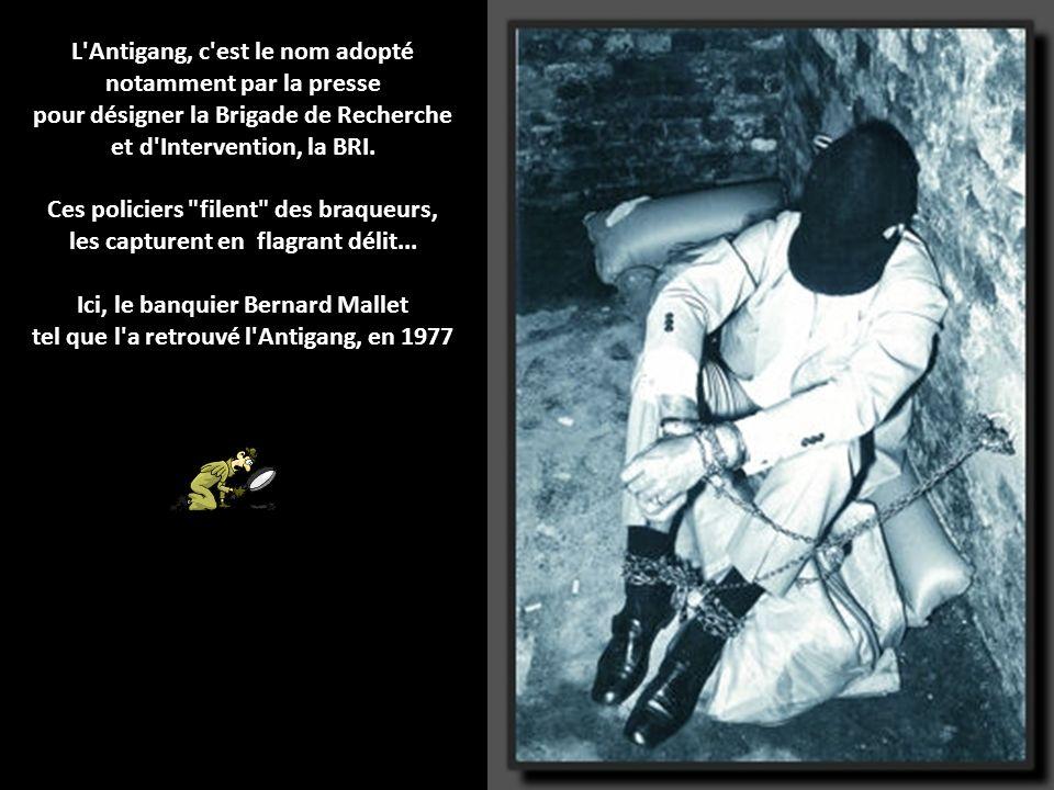 L Antigang, c est le nom adopté notamment par la presse