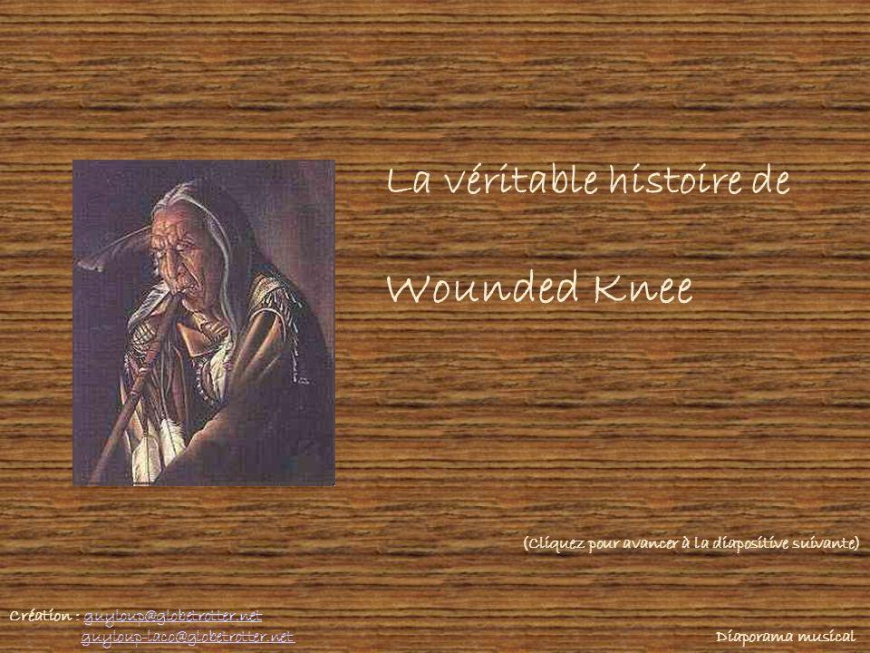 Wounded Knee La véritable histoire de
