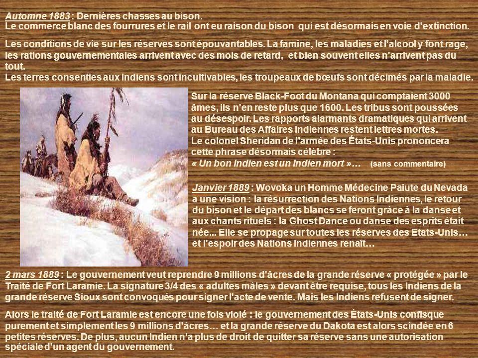 Automne 1883 : Dernières chasses au bison.