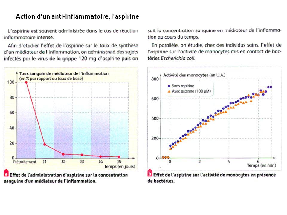 Action d un anti-inflammatoire, l aspirine