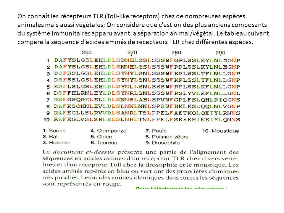 On connaît les récepteurs TLR (Toll-like receptors) chez de nombreuses espèces animales mais aussi végétales; On considère que c est un des plus anciens composants du système immunitaires apparu avant la séparation animal/végétal.