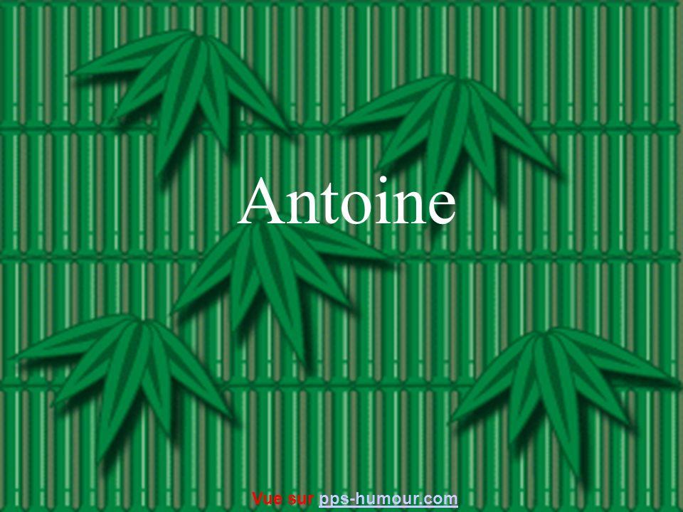 Antoine Vue sur pps-humour.com