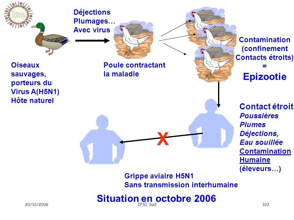 X Epizootie Situation en octobre 2006 Contact étroit Déjections