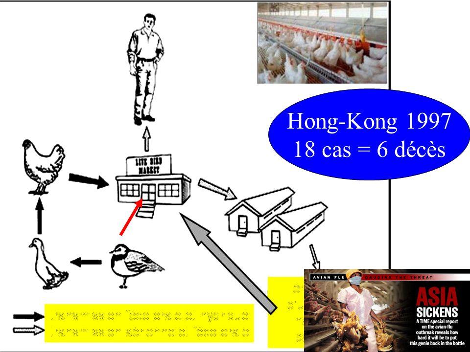 Hong-Kong 1997 18 cas = 6 décès Grippe aviaire, 2005 20/10/2006