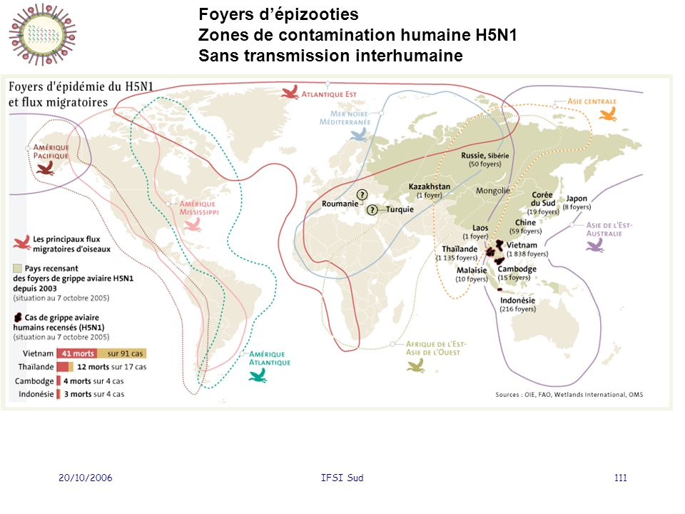 Zones de contamination humaine H5N1 Sans transmission interhumaine