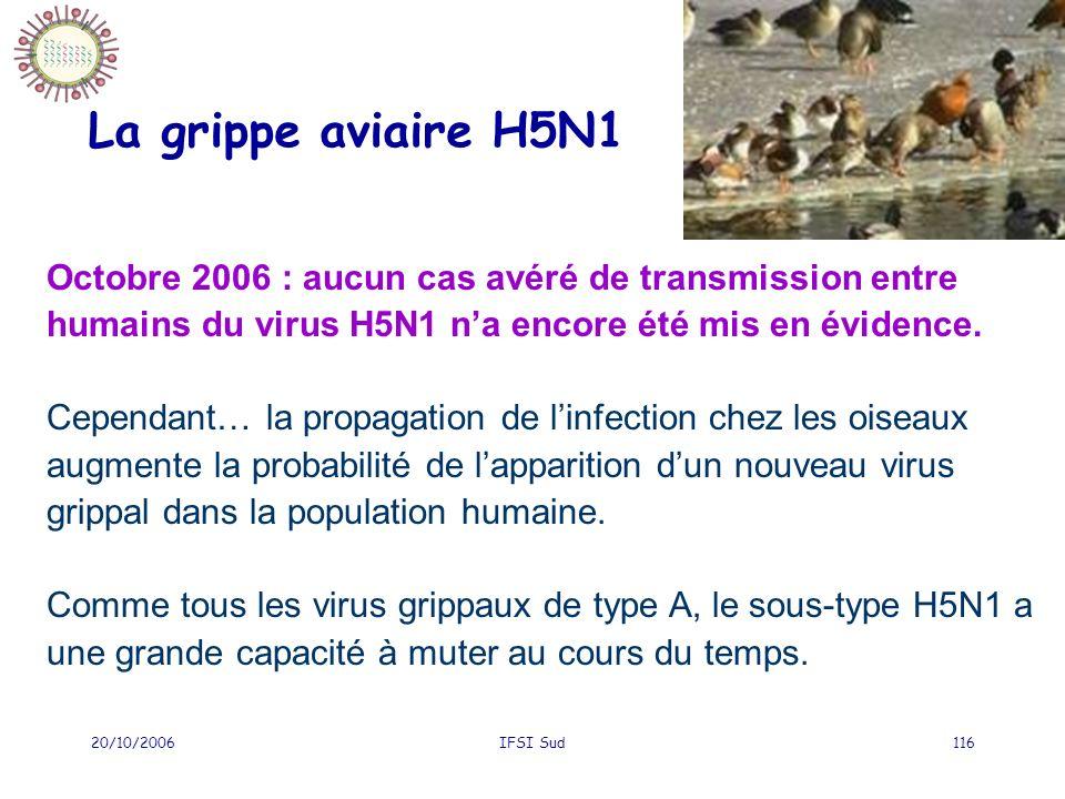 La grippe aviaire H5N1 Octobre 2006 : aucun cas avéré de transmission entre humains du virus H5N1 n'a encore été mis en évidence.