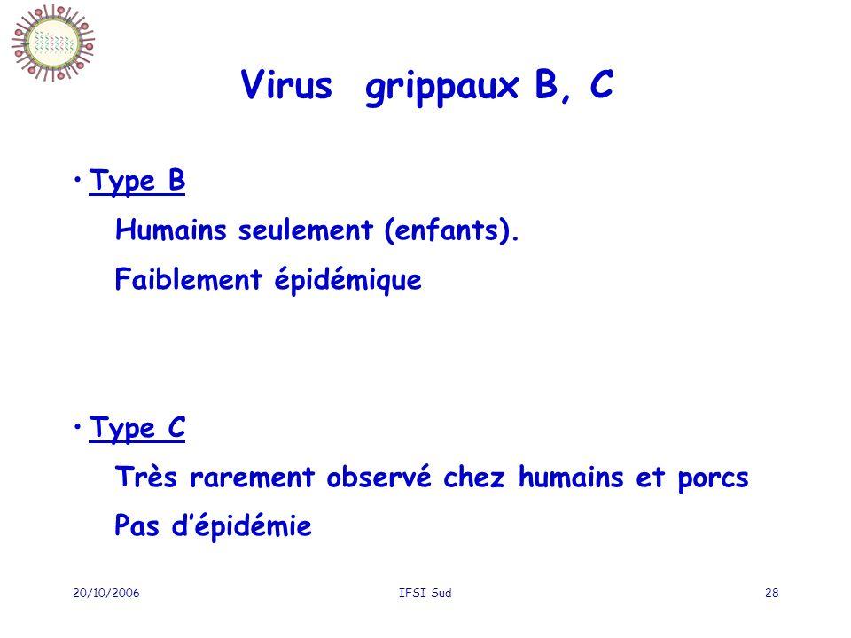 Virus grippaux B, C Type B Humains seulement (enfants).