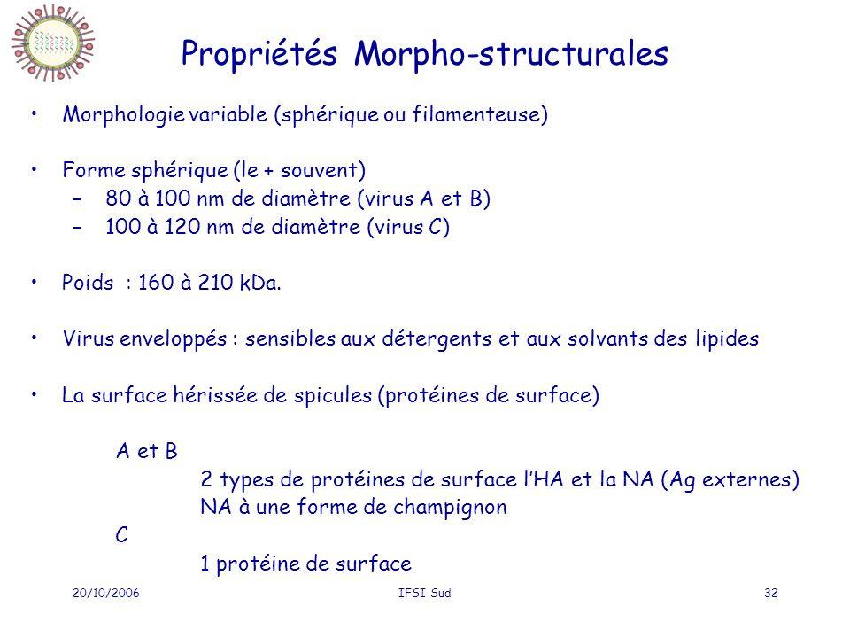 Propriétés Morpho-structurales