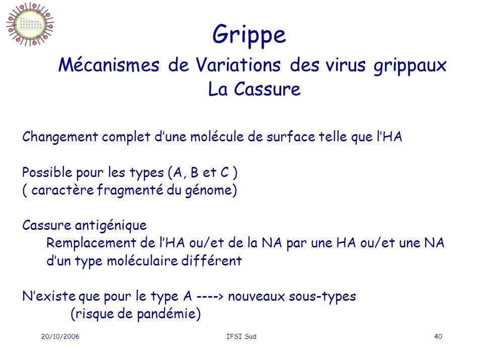 Grippe Mécanismes de Variations des virus grippaux La Cassure