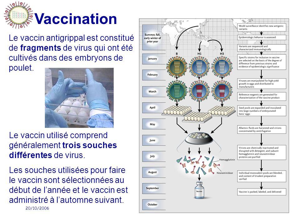 Vaccination Le vaccin antigrippal est constitué de fragments de virus qui ont été cultivés dans des embryons de poulet.