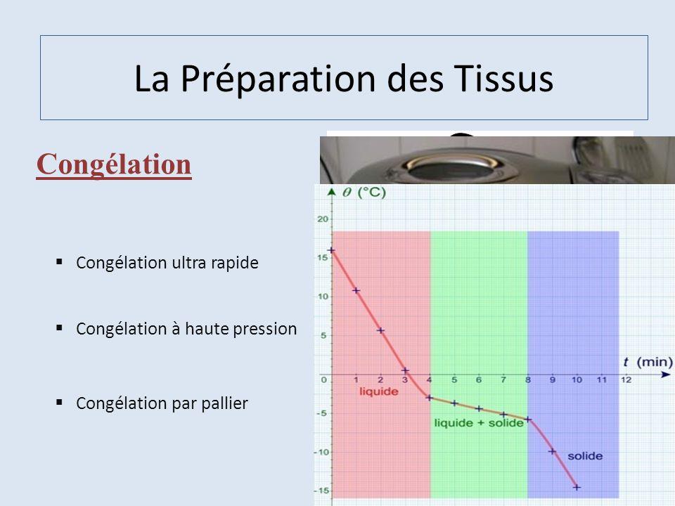 La Préparation des Tissus