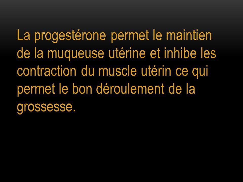 La progestérone permet le maintien de la muqueuse utérine et inhibe les contraction du muscle utérin ce qui permet le bon déroulement de la grossesse.