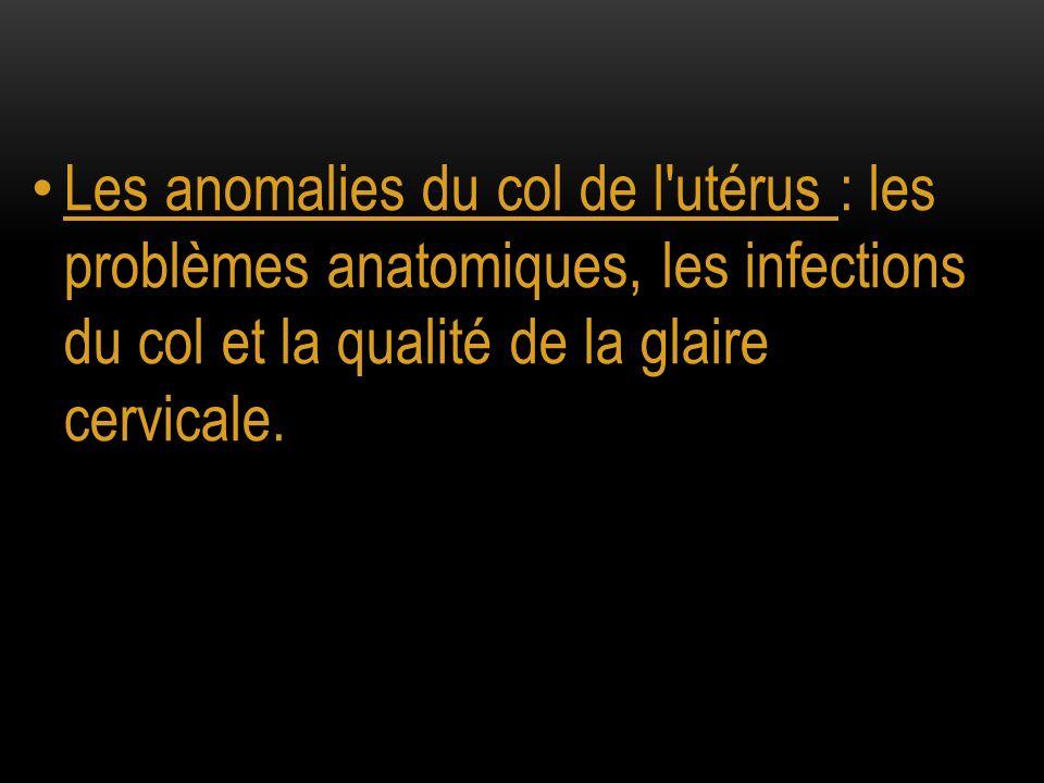 Les anomalies du col de l utérus : les problèmes anatomiques, les infections du col et la qualité de la glaire cervicale.
