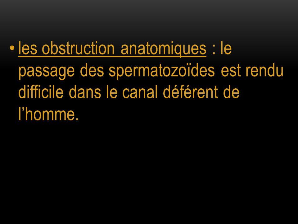les obstruction anatomiques : le passage des spermatozoïdes est rendu difficile dans le canal déférent de l'homme.