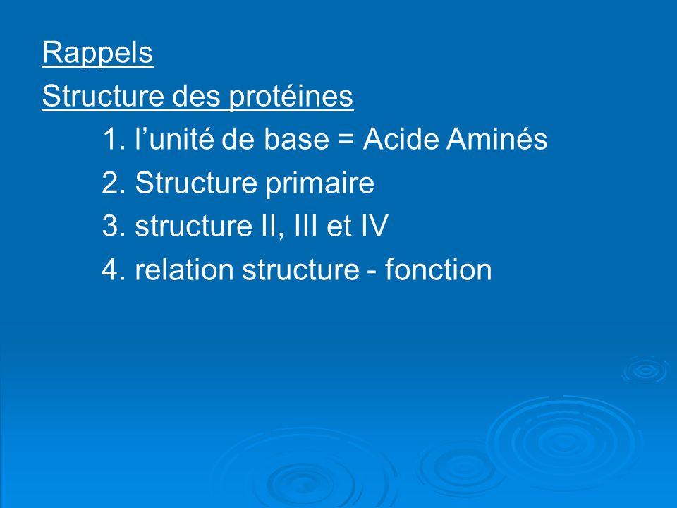 Rappels Structure des protéines. 1. l'unité de base = Acide Aminés. 2. Structure primaire. 3. structure II, III et IV.