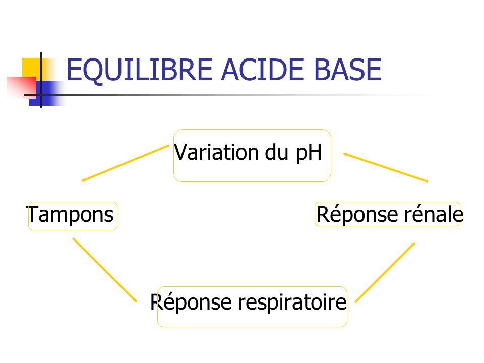 EQUILIBRE ACIDE BASE Variation du pH Tampons Réponse rénale