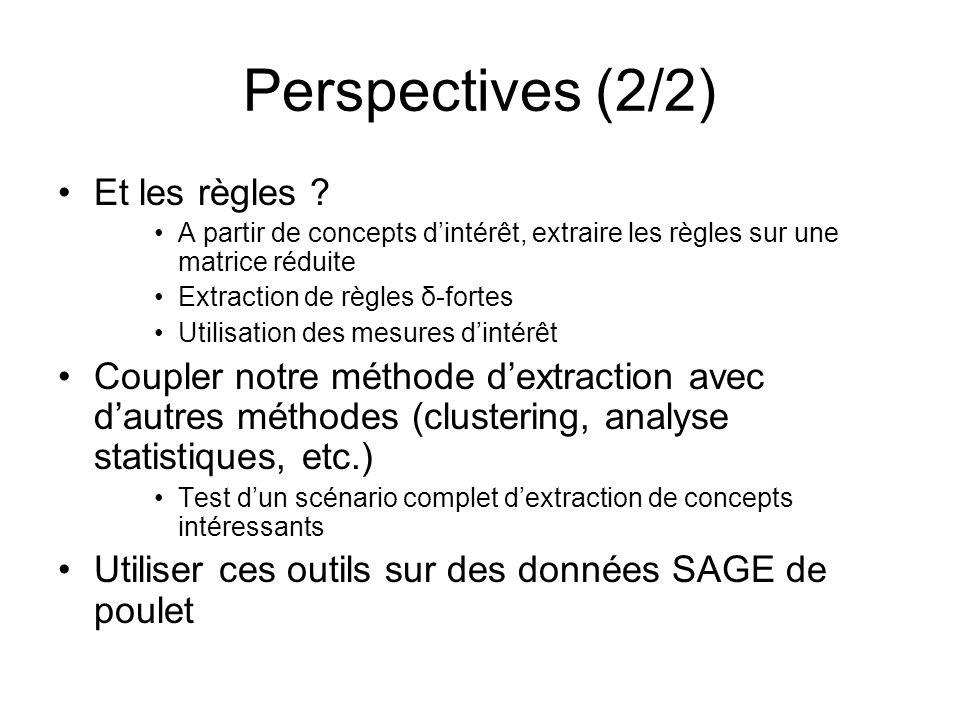 Perspectives (2/2) Et les règles