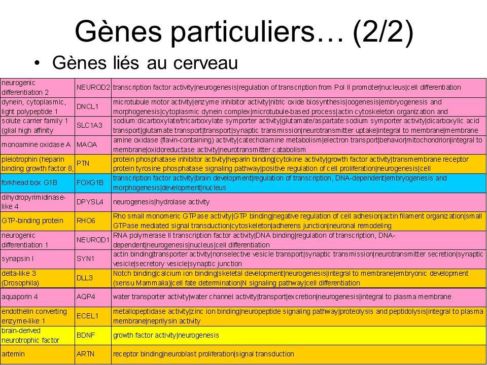 Gènes particuliers… (2/2)
